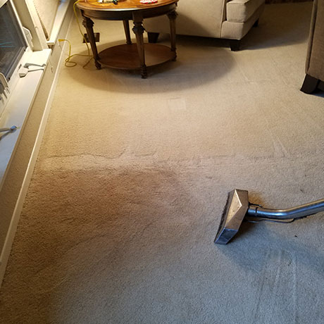 vacuum cleaning in the house